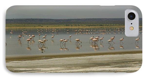 Flamingos Magadi Hot Springs Kenya IPhone Case