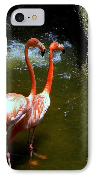 IPhone Case featuring the photograph Flamingo Pair by Terri Mills