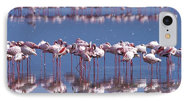 Flamingo Reflection - Lake Nakuru IPhone Case by Sandra Bronstein