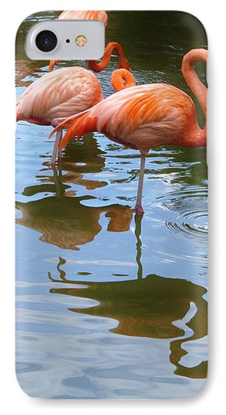 IPhone Case featuring the photograph Flamingo Reflections by Margaret Bobb