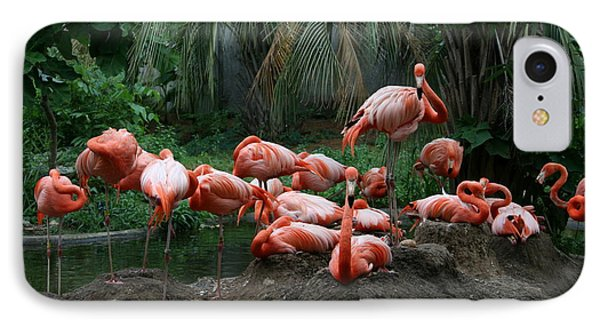 IPhone Case featuring the photograph Flamingos by Cathy Harper