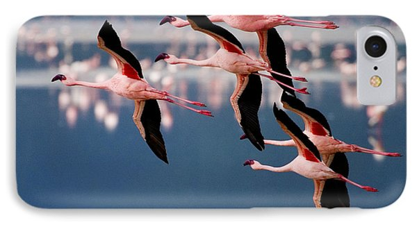 Flamingos In Flight-signed IPhone Case by J L Woody Wooden