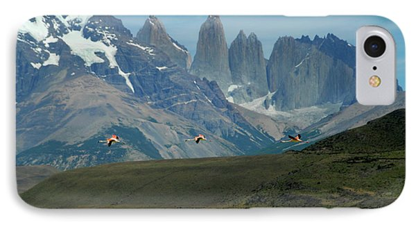 Flamingos Over Lago Nordenskjold IPhone Case by Alan Toepfer