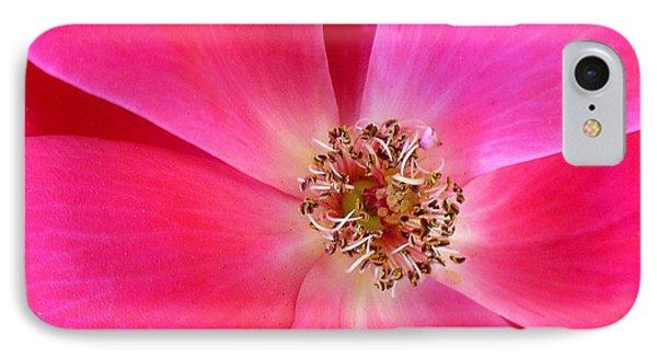 Flat Rose Hot Phone Case by Florene Welebny