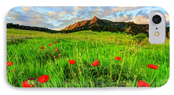Flatiron Poppies IPhone Case by Scott Mahon