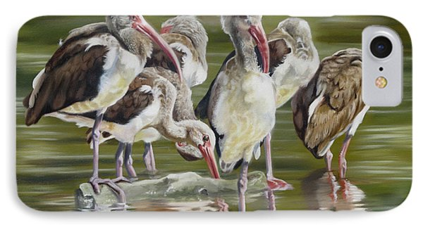 Fledgling Ibis Study IPhone Case by Phyllis Beiser