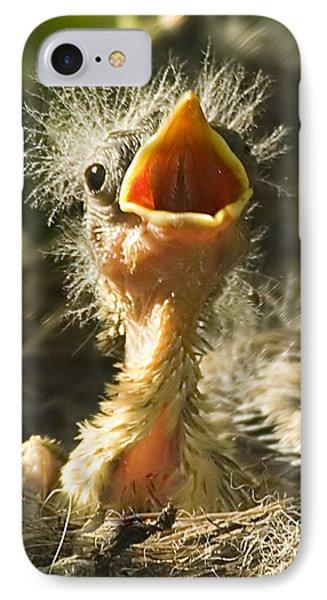 Fledgling Yellow Warbler IPhone Case