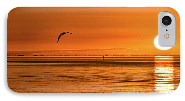 Flight At Sunset Phone Case by Christopher Holmes