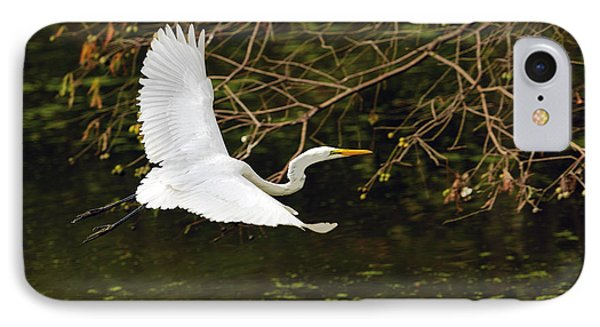 Flight Of The Egret IPhone Case