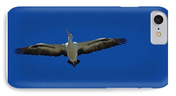 Flight Of The Pelican Phone Case by Blair Stuart