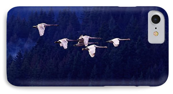 Flight Of The Swans IPhone Case by Sharon Talson