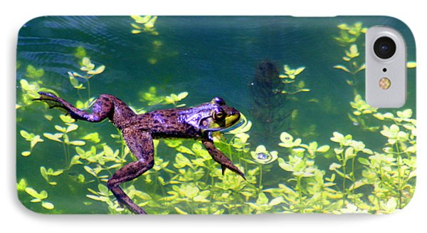 Floating Frog IPhone Case by Nick Gustafson