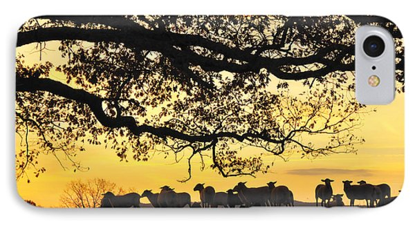 Flock At Sunrise Phone Case by Thomas R Fletcher