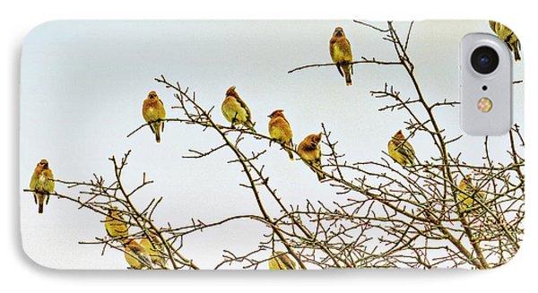 Flock Of Cedar Waxwings  IPhone Case
