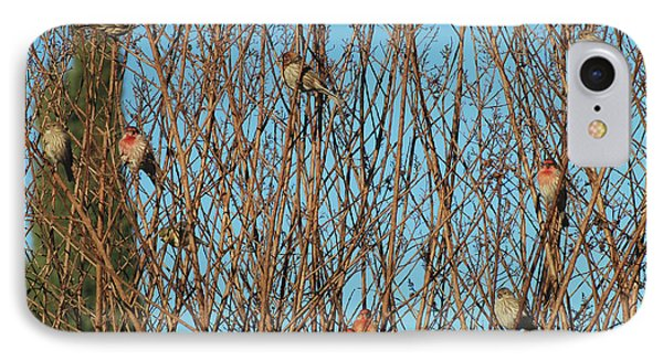 Flock Of Finches IPhone Case