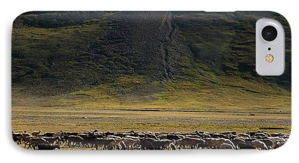 Flock Of Sheep Phone Case by Konstantin Dikovsky