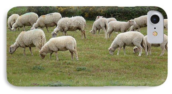 Flock Of Sheeps Phone Case by Jean Bernard Roussilhe