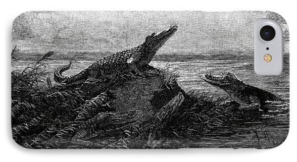 Florida Alligators, 1886 Phone Case by Granger