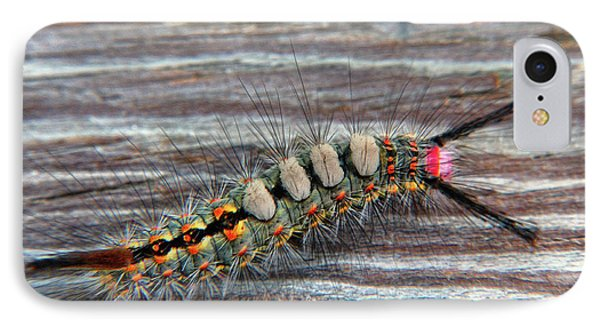 Florida Caterpillar IPhone Case by Hanny Heim