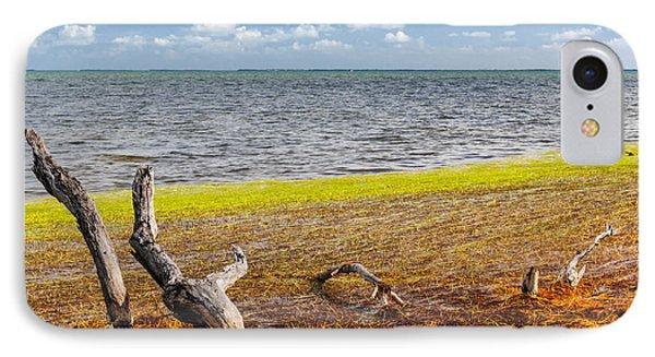 Florida Keys Colors IPhone Case by Elena Elisseeva