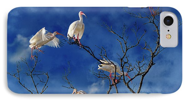Ibis iPhone 7 Case - Florida Keys The Exaggerated Ibis by Betsy Knapp