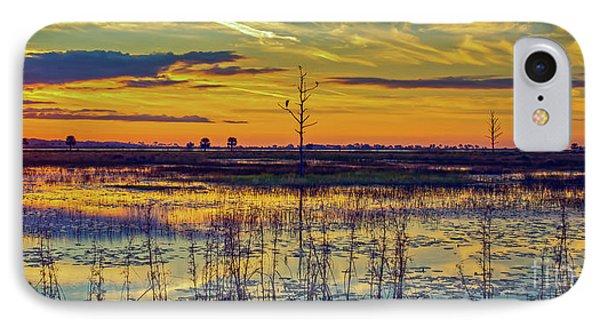 Florida Nature Paradise IPhone Case