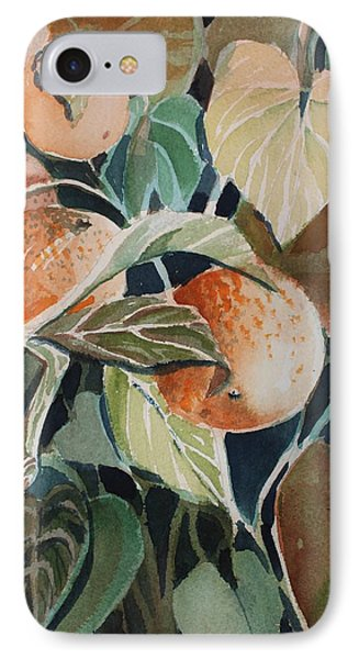 Florida Oranges IPhone Case by Mindy Newman