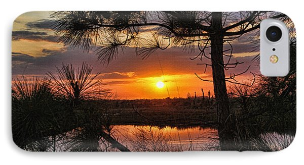 Florida Pine Sunset IPhone Case by HH Photography of Florida