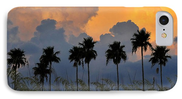 Florida Poster Phone Case by David Lee Thompson