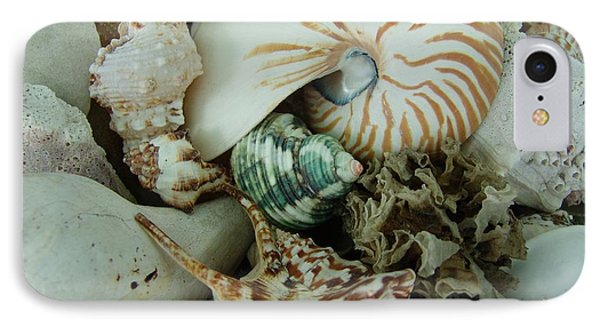 Florida Sea Shells IPhone Case