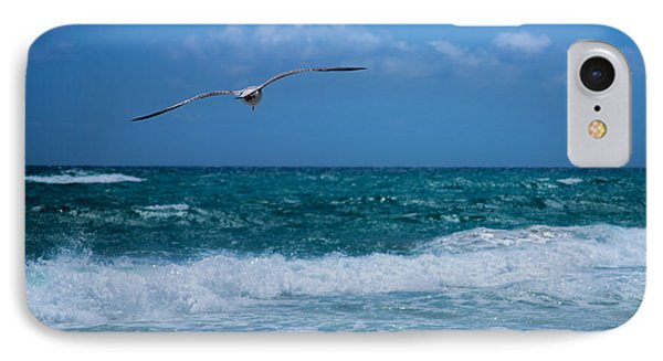 IPhone Case featuring the photograph Florida Seagull In Flight by Jason Moynihan
