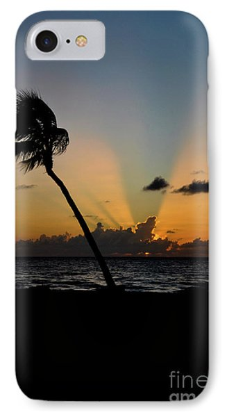 IPhone Case featuring the photograph Florida Sunrise Palm by Kelly Wade