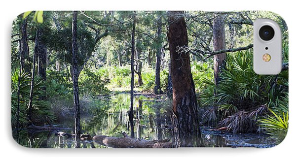 Florida Swamp IPhone Case by Kenneth Albin
