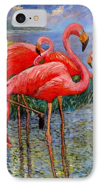 Florida's Free Flamingo's IPhone Case by Charles Munn