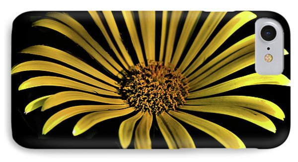 Flower 1 IPhone Case by Lawrence Christopher