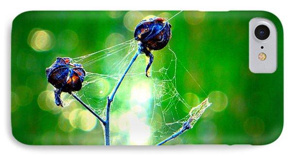IPhone Case featuring the photograph Flower 3 Spiderweb  by David Mckinney