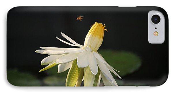 Flower And Bee In Singapore IPhone Case by Diane Height