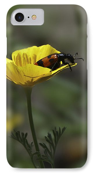 Flower And Bug Phone Case by Svetlana Sewell