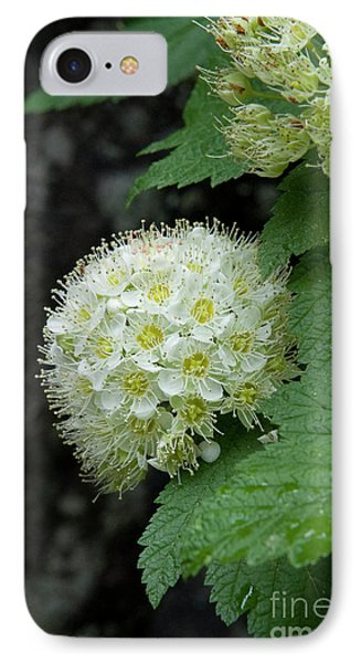 IPhone Case featuring the photograph Flower Ball by Rod Wiens