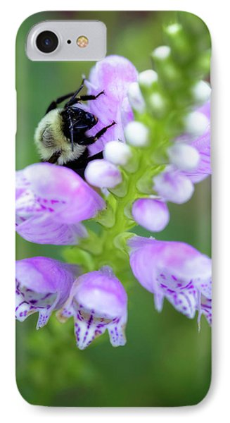 IPhone Case featuring the photograph Flower Climbing by Eduard Moldoveanu