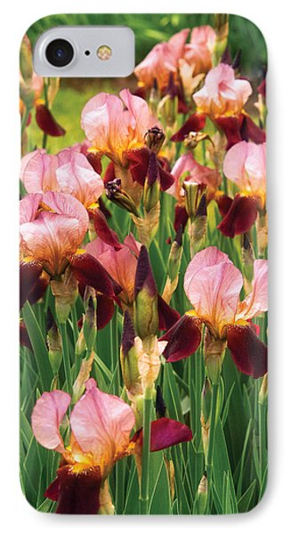 Flower - Iris - Gy Morrison Phone Case by Mike Savad