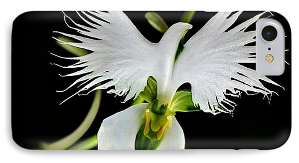 Flower Oddities - Flying White Bird Flower IPhone Case by Merton Allen