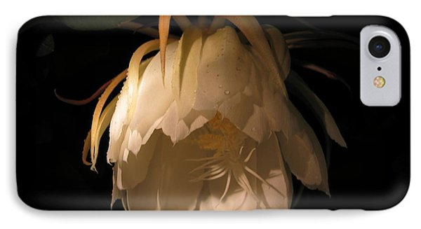 Flower Of The Night 02 IPhone Case by Andrea Jean