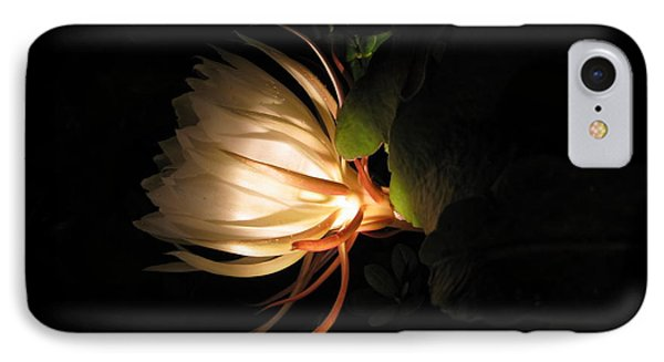 Flower Of The Night 03 IPhone Case by Andrea Jean
