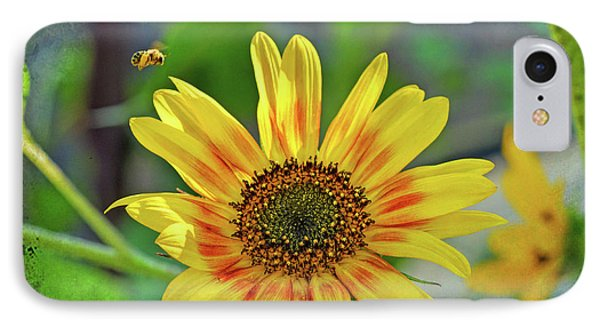 IPhone Case featuring the photograph Flower Of The Sun by Kerri Farley