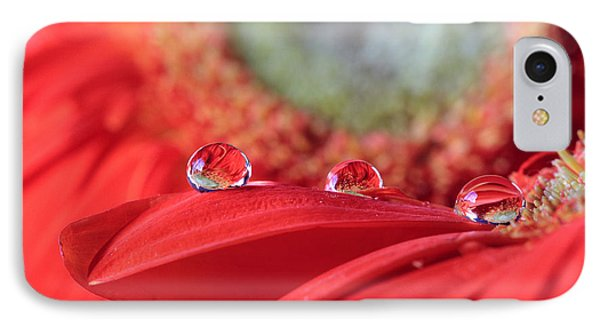 Flower Reflections IPhone Case