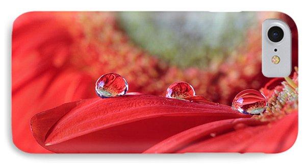 Flower Reflections IPhone Case by Angela Murdock