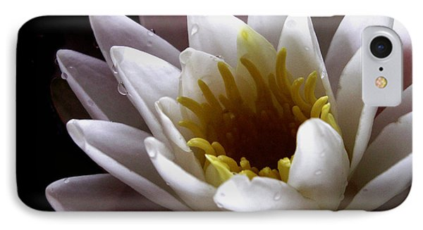 IPhone Case featuring the photograph Flower Waterlily by Nancy Griswold