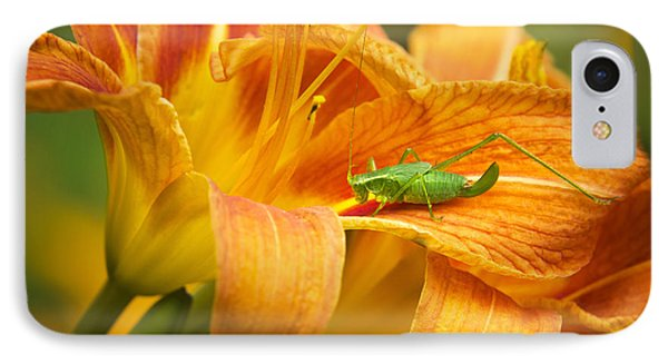 Flower With Company IPhone Case by Christina Rollo