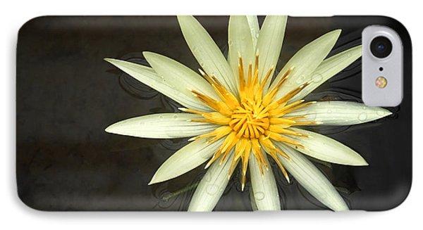 Flowerburst IPhone Case by Joe Bonita